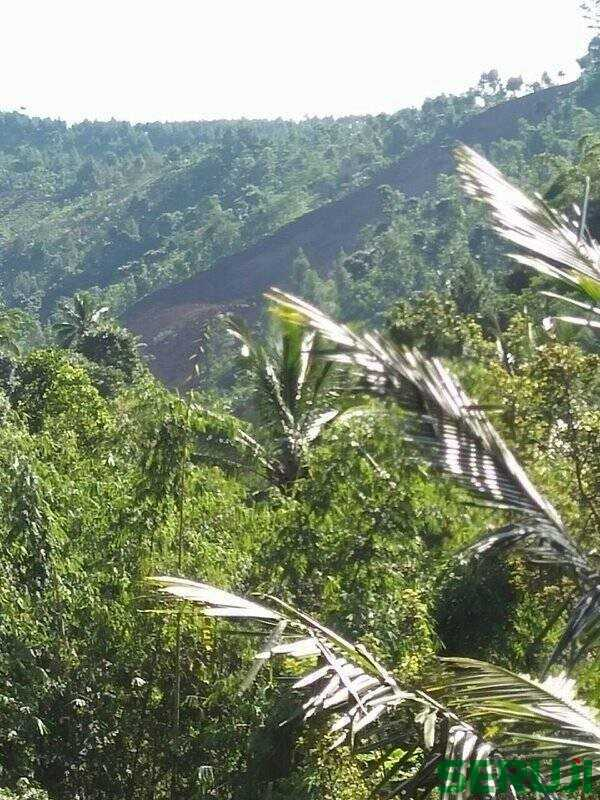 Tanah longsor