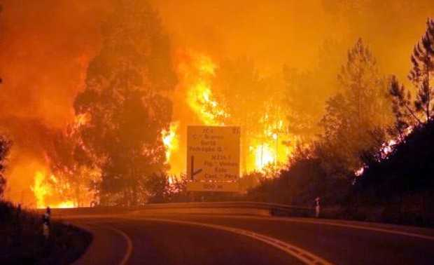 portugal, kebakaran hutan