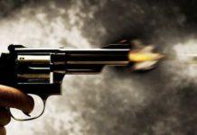 pistol, senjata api