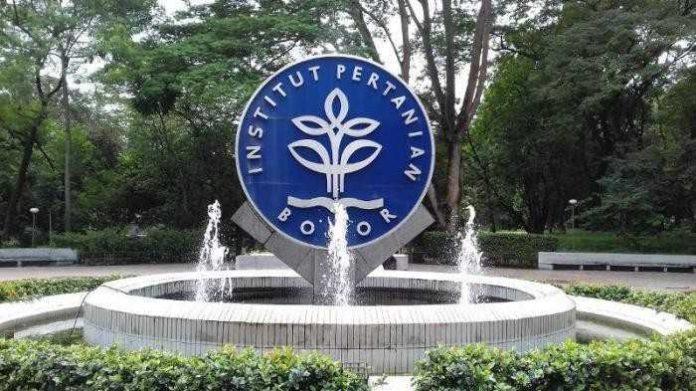 IPB Bogor