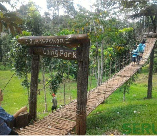 Laing Park