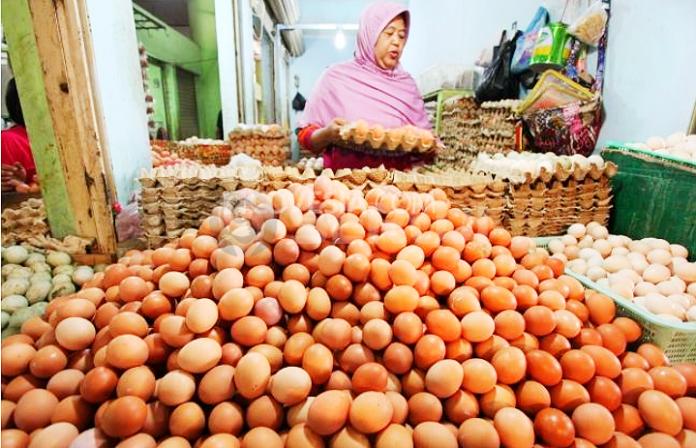 Telur ayam naik