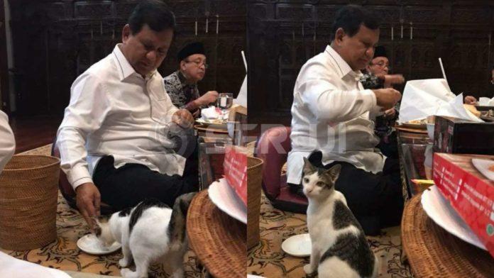 Prabowo dengan kucing